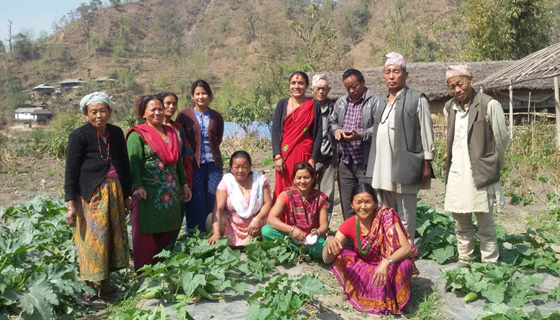 Commercial vegetable farming- A new livelihood option for farmers in