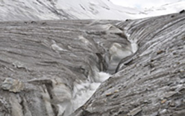 The surface of Urumqi Glacier No. 1 is covered by debris and organic material with a stream running off of the surface. With a temperature of about -4° C at an elevation of 3,800 m, the ice is very impermeable and meltwater is more likely to run off the surface. Glaciers that are at the melting point (~0° C) tend to have many crevasses and cracks through which meltwater flows to the glacier bed.