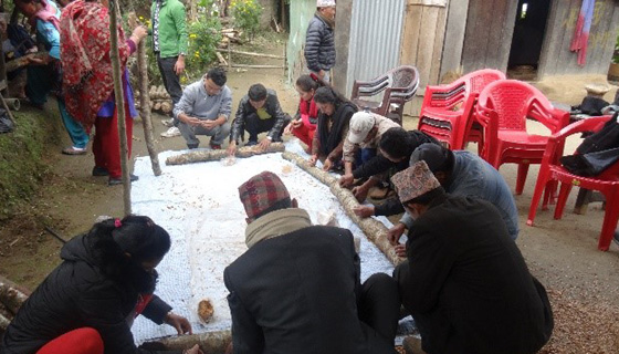 Training on shitake mushroom cultivation in Taplejung