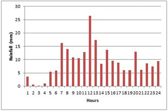 Hourly rainfall at Dipayal on 17 June (Department of Hydrology and Meteorology, 2013)