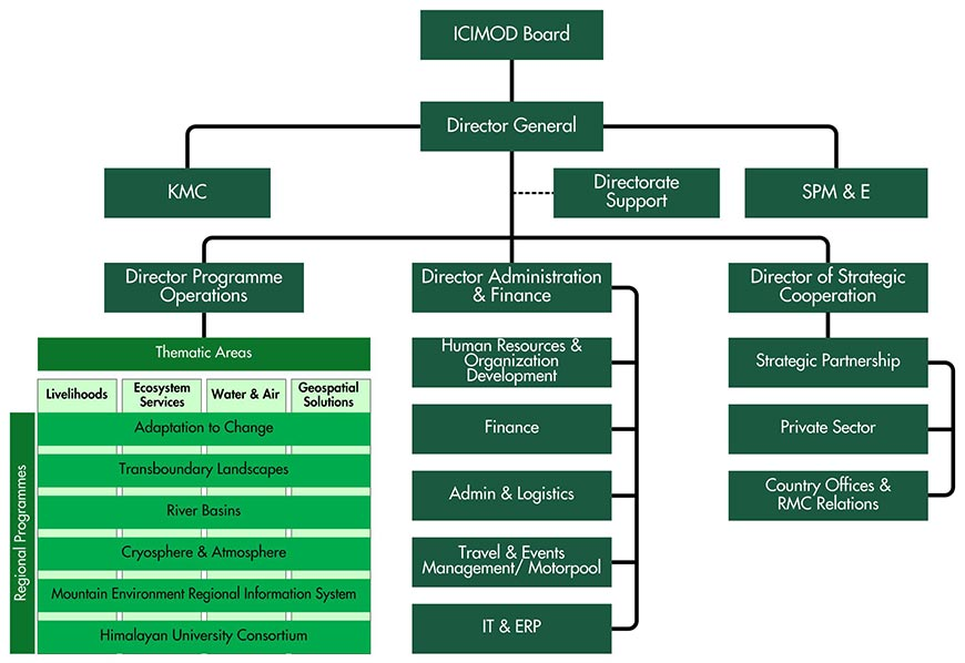 organisational structure of a company pdf