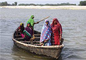 Gender dynamics of female-headed households in rural Bihar, India