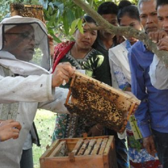 ICIMOD and KHDC organize training on beekeeping in the Chittagong Hill Tracts, Bangladesh