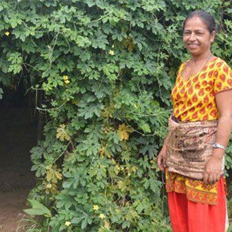 Straw Mulches aid farmers battling drought