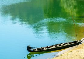 Indus Basin Initiative