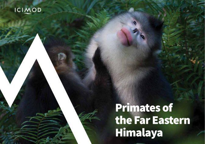 primates of far eastern himalaya