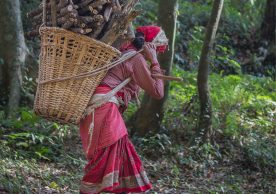Community based climate vulnerability