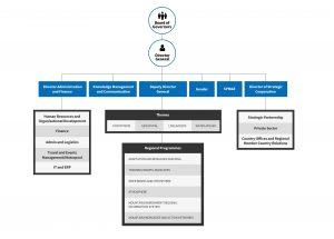 icimod organisation chart