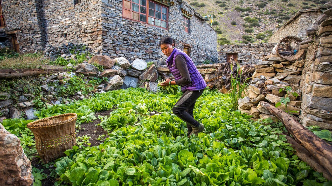 Mountain communities rely on agriculture, tourism, and remittance