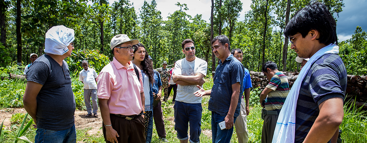 South–south learning in participatory forest management