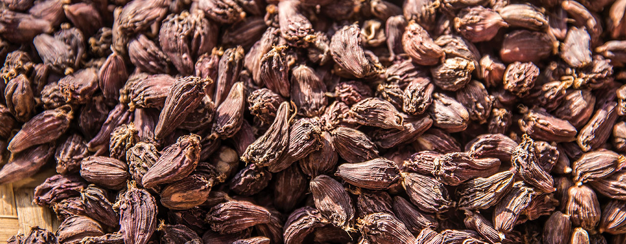 Diversification to reduce risks in large cardamom production