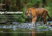 Tiger conservation: Exploring potential collaboration between Myanmar and India