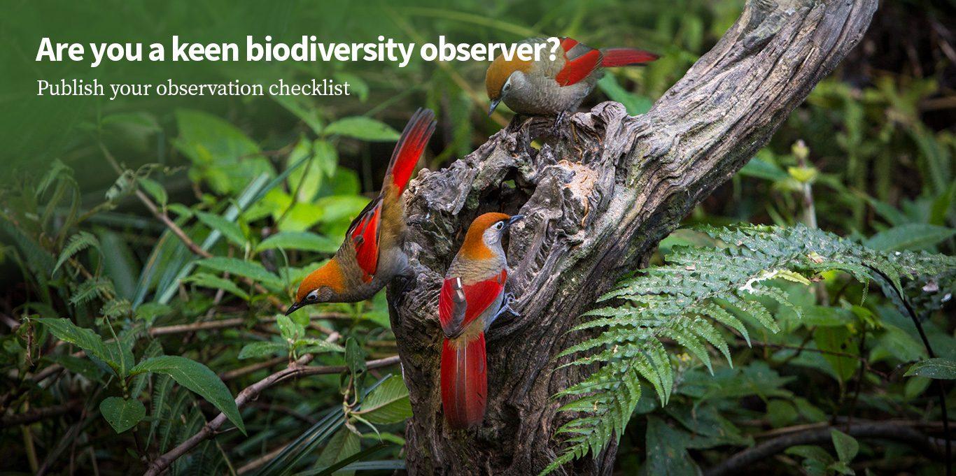 biodiversity observer