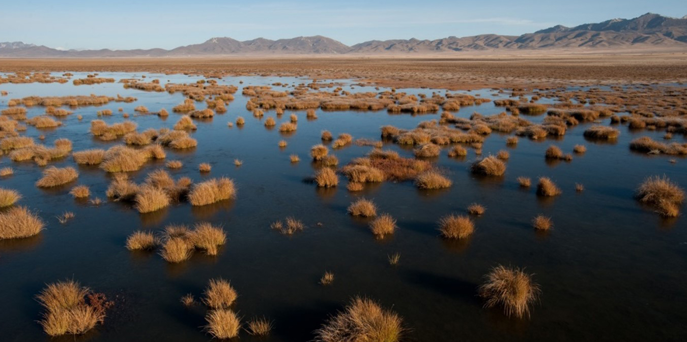 High-altitude wetlands