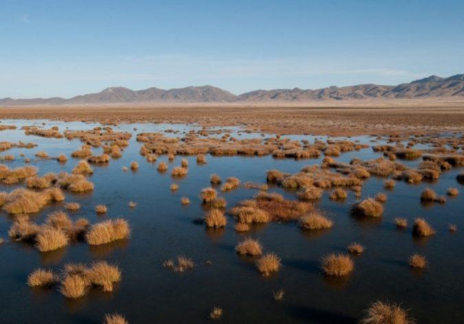 high altitude wetland-1366x681