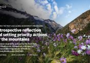 Towards the Post-2020 Global Biodiversity Framework: Retrospective reflection and setting priority actions for the mountains