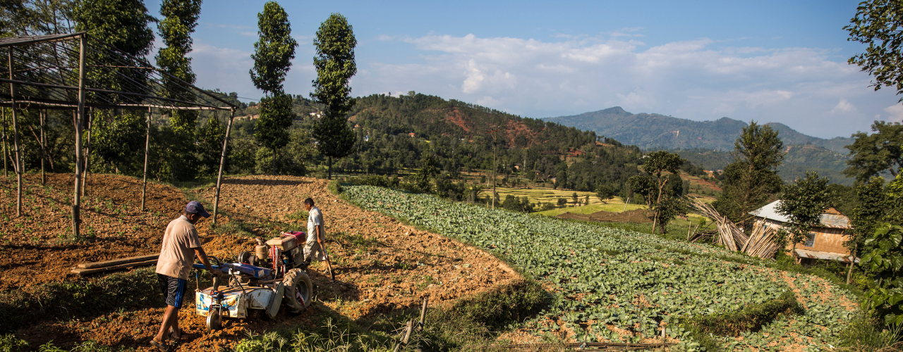 Data for food security planning  in Nepal