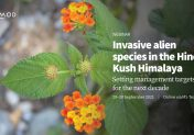 Invasive alien species in the Hindu Kush Himalaya: Setting management targets for the next decade